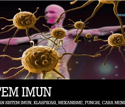 sistem-imun
